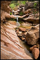 Pine Creek Canyon and Pine Creek waterfall. Zion National Park ( color)