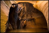 Cathedral chamber, Pine Creek Canyon. Zion National Park ( color)