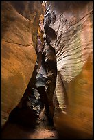Narrows, Pine Creek Canyon. Zion National Park ( color)