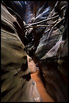 Logs jammed high in Pine Creek Canyon narrows. Zion National Park ( color)