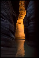 Glow in dark narrows, Pine Creek Canyon. Zion National Park ( color)