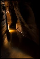 Light in dark flooded Pine Creek Canyon. Zion National Park ( color)
