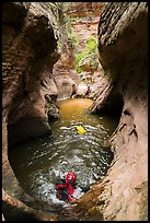 Canyoneers swim through a pothole, Upper Left Fork. Zion National Park, Utah ( color)