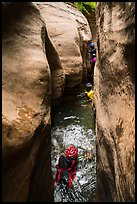 Canyoneers swim through narrows, Upper Left Fork. Zion National Park, Utah ( color)