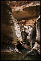 Canyonneer rappelling into the Subway. Zion National Park, Utah ( color)