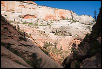 Canyonneers walk on ledge, Behunin Canyon. Zion National Park, Utah ( color)