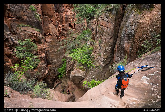 Canyonneers rapples into the bottom of Behunin Canyon. Zion National Park, Utah (color)