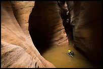 Canyonneer swimming in Pine Creek Canyon. Zion National Park, Utah ( color)