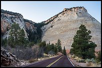 Road and Checkerboard Mesa. Zion National Park ( color)