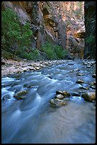 Virgin River and steep canyon walls in the Narrows. Zion National Park, Utah, USA. (color)