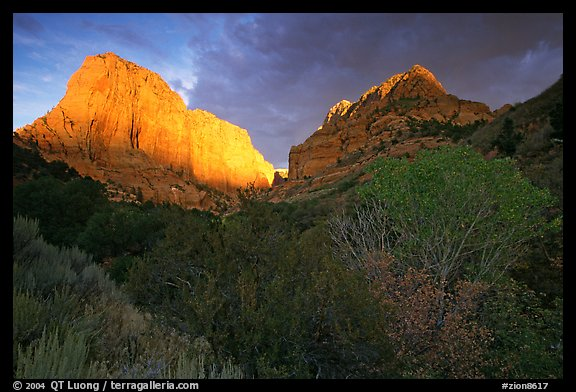 Kolob Canyons at sunset. Zion National Park (color)