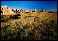 Tall grass prairie and badlands near Cedar Pass. Badlands National Park, South Dakota, USA.