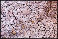 Rocks and mud cracks. Badlands National Park ( color)