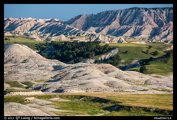 Badlands and Juniper forest. Badlands National Park (color)