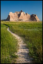 Trail winding in prairie next to butte. Badlands National Park, South Dakota, USA. (color)