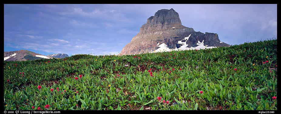 Alpine scenery with triangular peak rising above meadows. Glacier National Park (color)