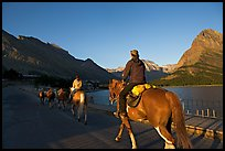 Horses on the shores of Swiftcurrent Lake, sunrise. Glacier National Park ( color)