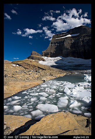 Icebergs in Upper Grinnel Lake, with glacier and Mt Gould in background. Glacier National Park (color)