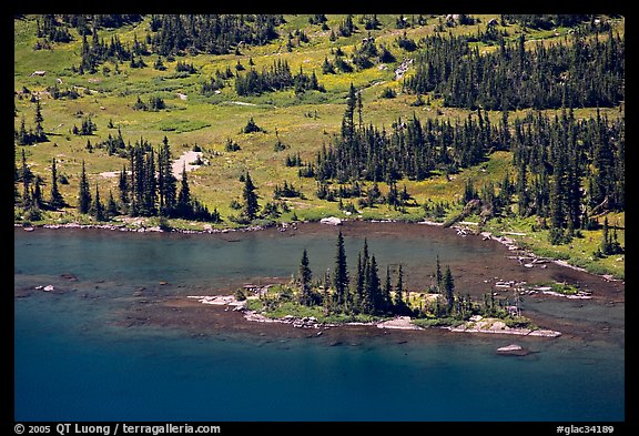 Islet on Hidden Lake. Glacier National Park (color)