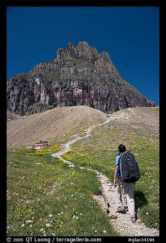 Backpacker and peak near Logan Pass. Glacier National Park (color)