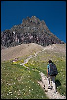 Backpacker and peak near Logan Pass. Glacier National Park ( color)