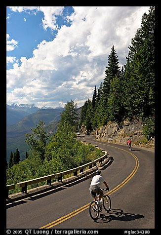Bicyclists riding down Going-to-the-Sun road. Glacier National Park (color)