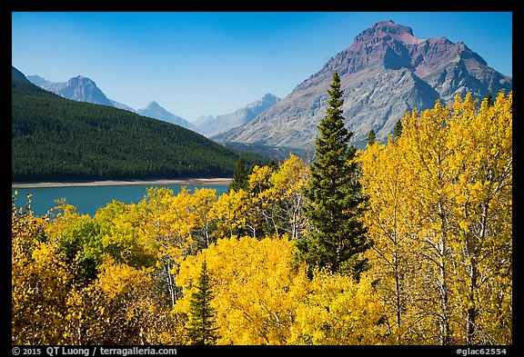 Autumn color, Rising Wolf Mountain, Lower Two Medicine Lake. Glacier National Park (color)