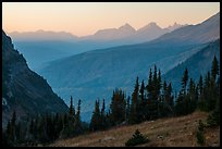Sunset from Highline trail. Glacier National Park ( color)