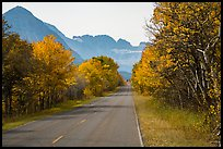Road in autumn, Many Glacier. Glacier National Park, Montana, USA.