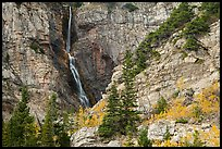 Apikuni Falls and autumn colors. Glacier National Park ( color)