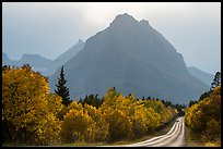 Road, forest in autum foliage, and park, Many Glacier. Glacier National Park, Montana, USA.