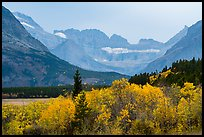 Forest in autum foliage and Garden Wall, Many Glacier. Glacier National Park ( color)