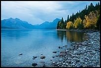 Lake McDonald shores in autum. Glacier National Park ( color)