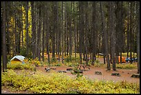 Apgar Campground in autumn. Glacier National Park ( color)