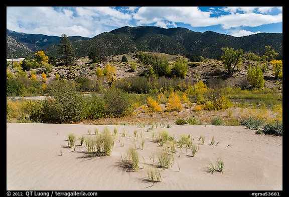 Dune sand, creek, grasslands, and mountains in autumn. Great Sand Dunes National Park and Preserve (color)