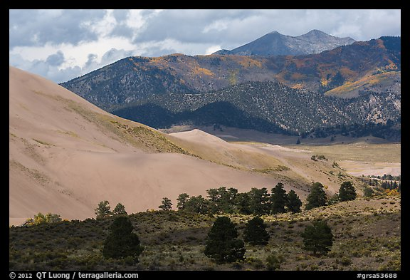 Sangre de Cristo range with bright patches of aspen above dunes. Great Sand Dunes National Park and Preserve (color)
