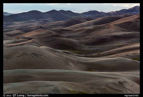 Dune ridges at dusk. Great Sand Dunes National Park and Preserve (color)