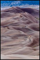 Dune field at dusk. Great Sand Dunes National Park and Preserve ( color)