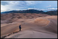 Visitor looking, dune field. Great Sand Dunes National Park and Preserve, Colorado, USA.