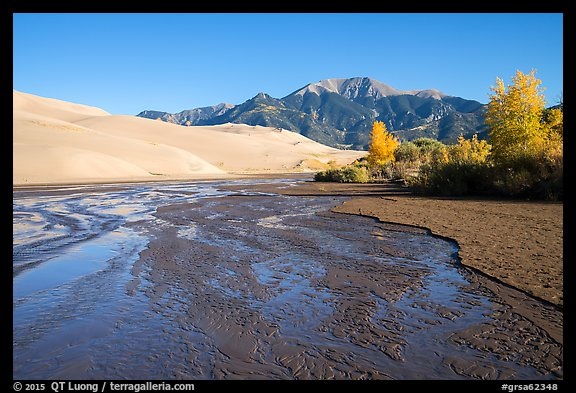 Medano Creek flowing, dunes, and trees in autumn foliage. Great Sand Dunes National Park and Preserve (color)