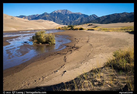 Banks of flowing Medano Creek, dunes and mountains. Great Sand Dunes National Park and Preserve (color)