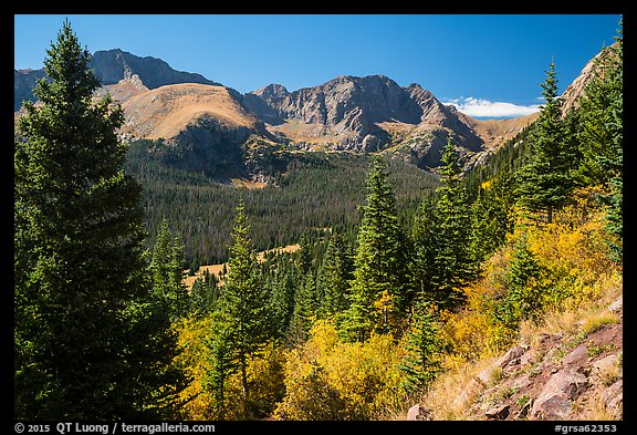 Subalpine forest, Sangre de Cristo mountains. Great Sand Dunes National Park and Preserve (color)