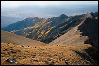 Summit slopes on Mount Herard, ridges, autumn colors, and dunes. Great Sand Dunes National Park and Preserve ( color)