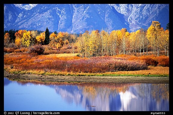 Autumn colors and reflections of Mt Moran in Oxbow bend. Grand Teton National Park (color)