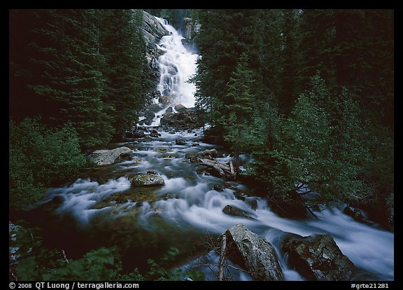 Hidden Falls, stream, and forest. Grand Teton National Park (color)