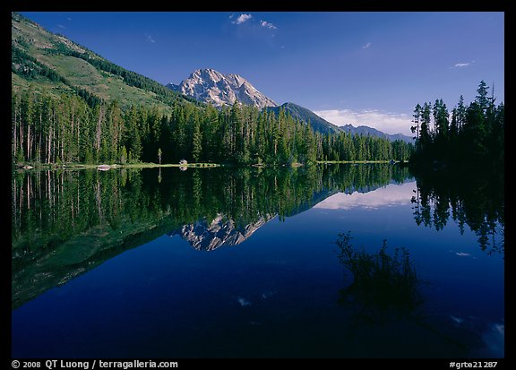 Leigh Lake with Mt Moran reflections, morning. Grand Teton National Park (color)