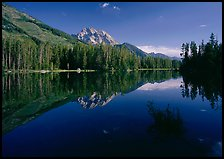 Leigh Lake with Mt Moran reflections, morning. Grand Teton National Park ( color)