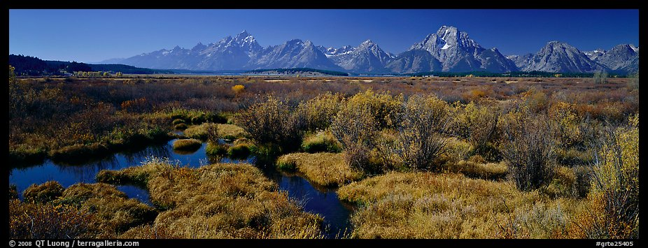 Wet meadows and mountains in the fall. Grand Teton National Park (color)