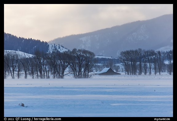Moulton Homestead in the distance, winter. Grand Teton National Park (color)