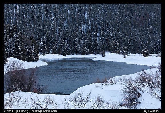 Snake River and forest covered hill in winter. Grand Teton National Park (color)